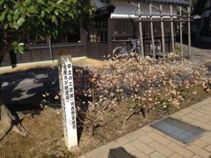 和紙の里01RY-1